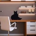 Gatto sdraiato dove vuoi tu: adesivo muro